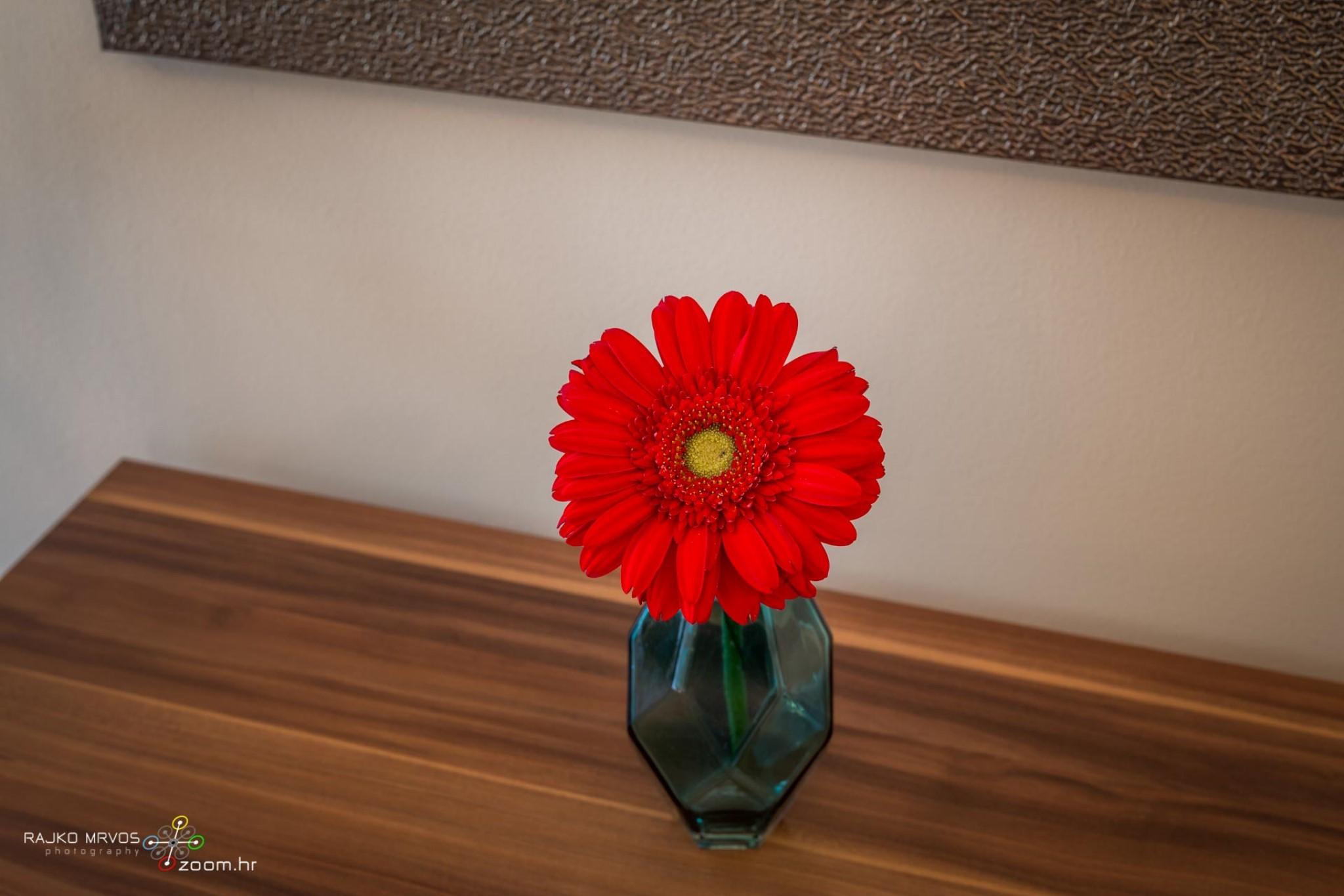 fotografiranje-interijera-fotograf-eksterijera-apartmana-vila-kuca-hotela-apartman-Pobri-Opatija-13
