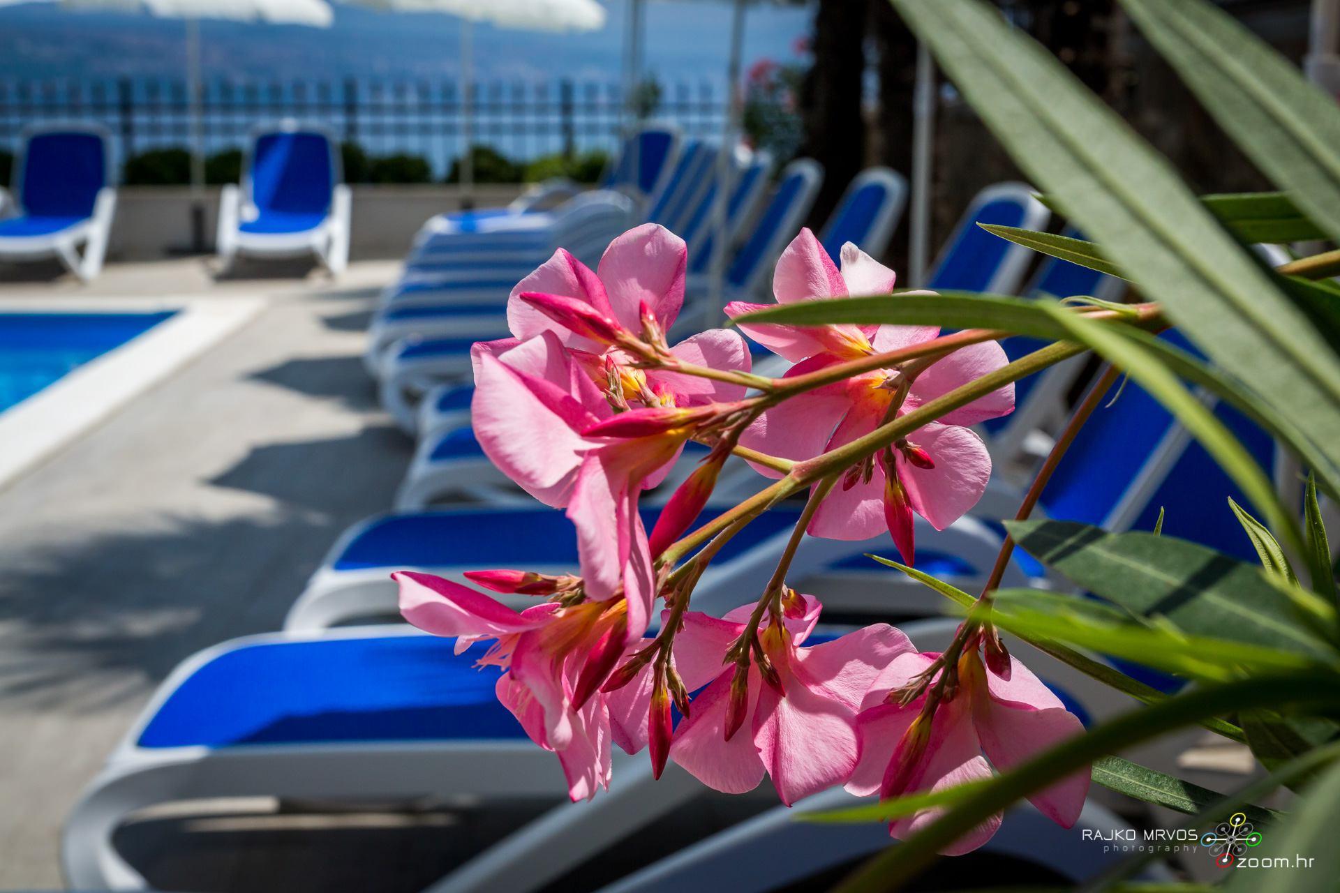 profesionalno-fotografiranje-hotela-fotograf-hotela-Hotel-Domino-Opatija-19